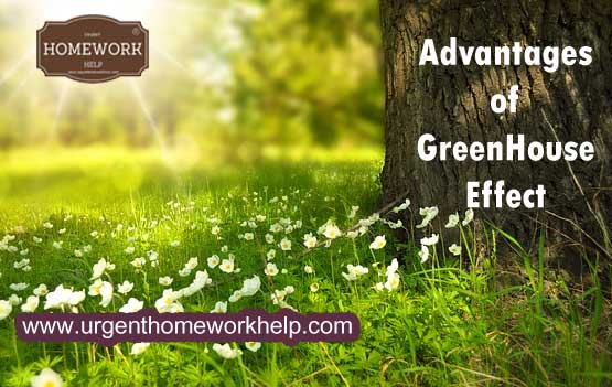 advantages of greenhouse effect