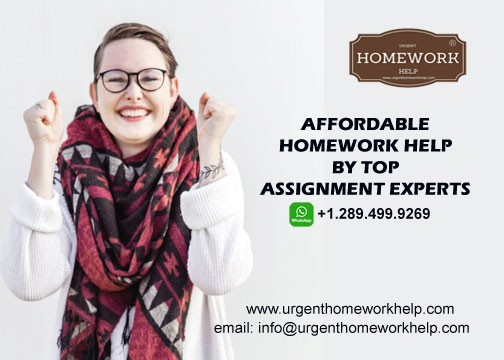 affordable homework help