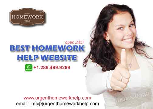 best homework help website