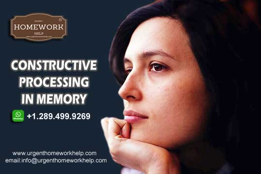 constructive processing in memory assignment help